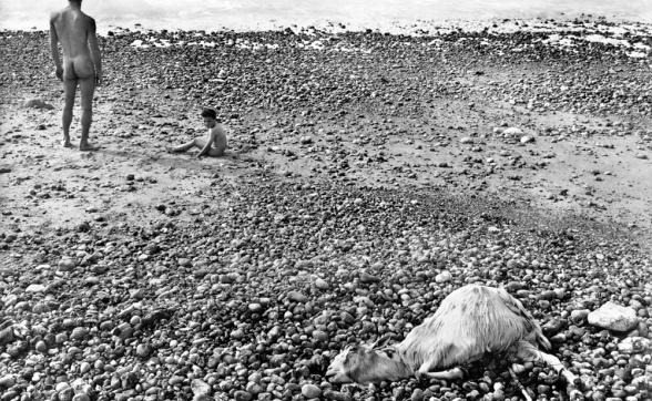 Agnes Varda Liverpool Biennale