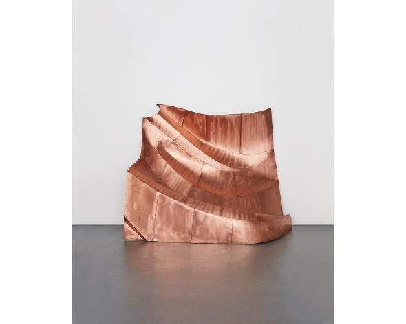 DANH VO We the people