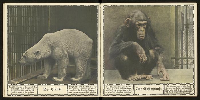 Historische Tierfotografien Buchgestaltung