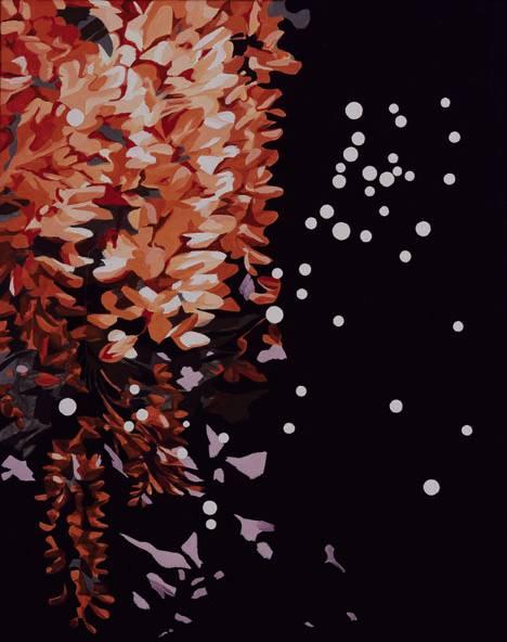 Haar der Berenike - Neue Bilder