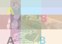 ABAB Projekt                        (http://ababprojekt.blogspot.com)