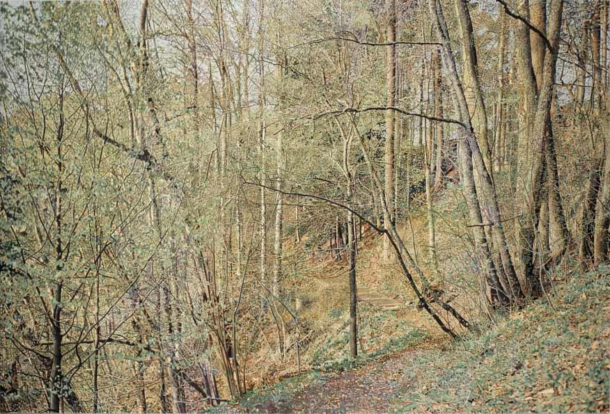 Franz Gertsch. Die vier Jahreszeiten