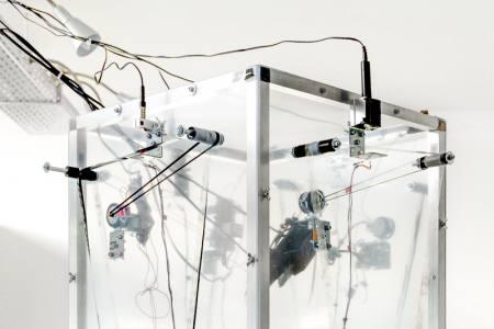 Bonn on Tape | Einzelausstellung Jens Standke (Berlin/Köln)