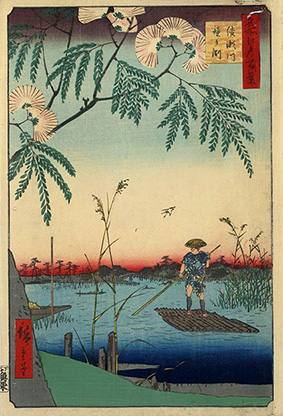 JAPANISCHE FRÜHLINGSBOTEN