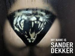 My name is Sander Dekker @ 30works