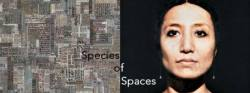 Species of Spaces