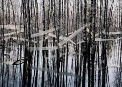 Riitta Päiväläinen: River Notes