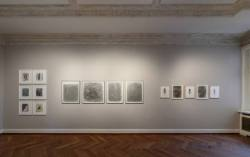 The Body of Drawing #1- The Touch of Density  - Ausstellung Hamburg