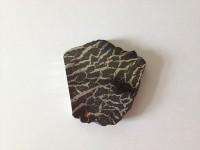 Documenta - Künstlerbücher, von Meteoriten und Kühen in Bäumen