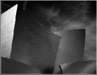 """Frank O Gehry Film """"SKETCHES OF FRANK GEHRY"""""""