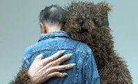 Künstler der 9. Berlin Biennale für zeitgenössische Kunst