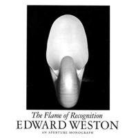 Edward Weston Nautilus Fotografie für Millionen versteigert